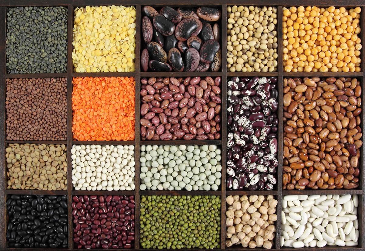 Dieta Settimanale Per Colesterolo : Dieta per ridurre il livello di colesterolo alto compcredtiotrap cf